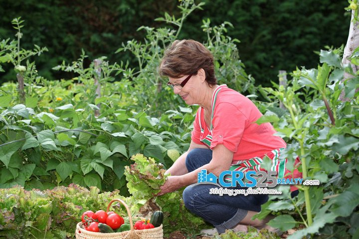 Amonsagana shutterstock_58468507-gardening