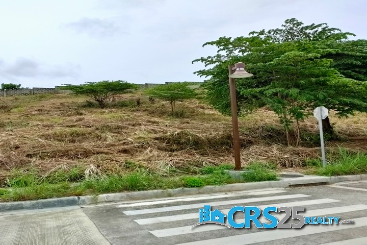 Priveya Hills Lot for Sale in Cebu 10