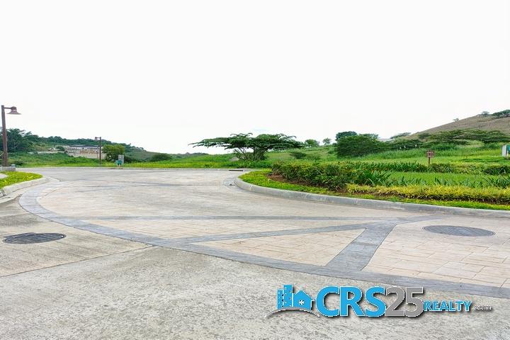 Priveya Hills Lot for Sale in Cebu 4