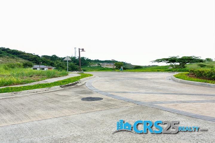Priveya Hills Lot for Sale in Cebu 5