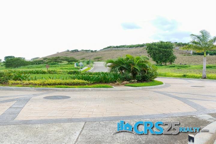 Priveya Hills Lot for Sale in Cebu 6
