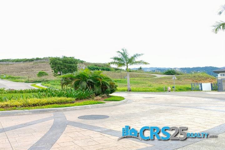 Priveya Hills Lot for Sale in Cebu 8